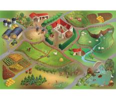 Covor Little Farm