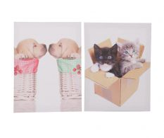 Set de 2 tablouri Puppy&Kitten