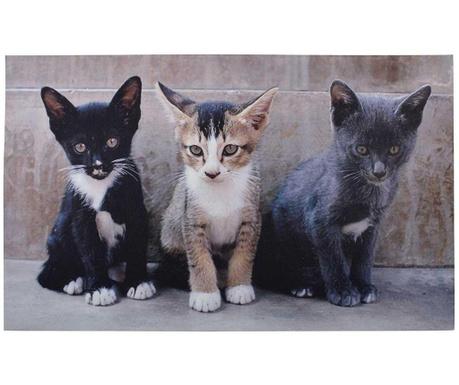Otirač Kittens 45x76.2 cm