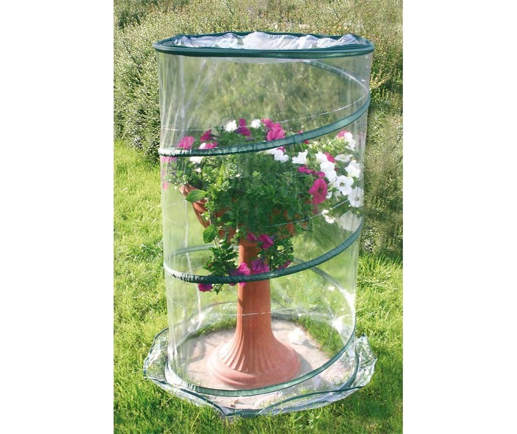 Miniskleník Anthurium Pop Up