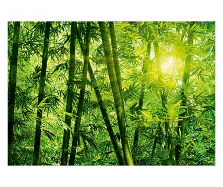 Tapet Bamboo Forest 254x366 cm