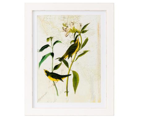 Botanics Geograph Kép 35x45 cm
