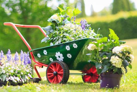 Подготовка на градината