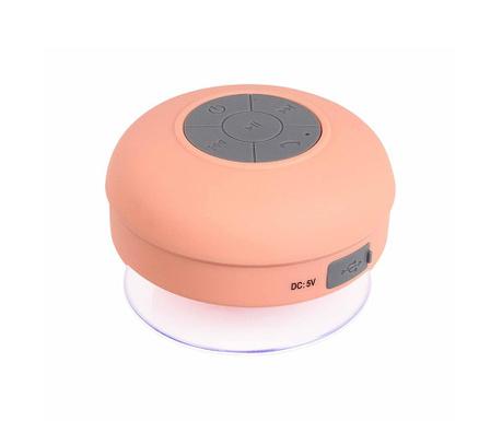 Prenosni zvočnik z mikrofonom Singing