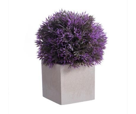 Seto Purple Műnövény virágcserépben