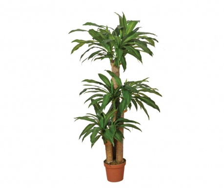 Umjetna biljka u posudi za cvijeće Dracena