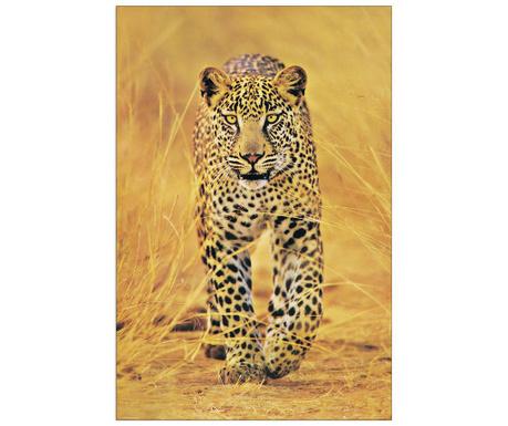 Cheetah Kép 60x90 cm