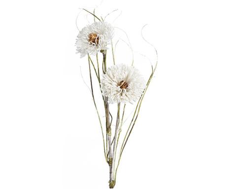 White flower Művirág