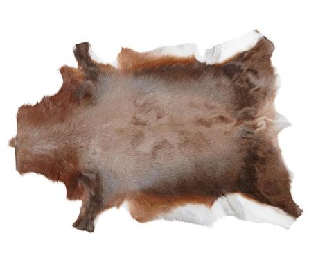 Covor Blesbok 78x103 cm