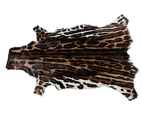 Covor Springbok 64x103 cm