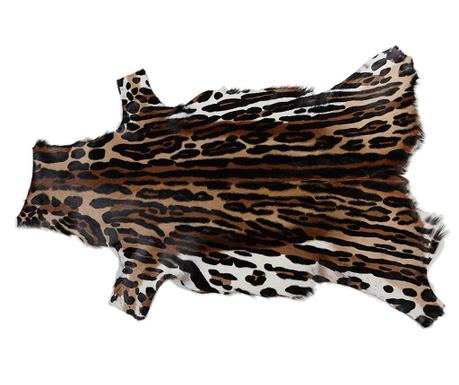 Covor Springbok 73x106 cm