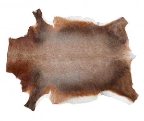 Covor Blesbok 76x108 cm