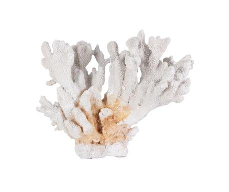 Декорация Coral