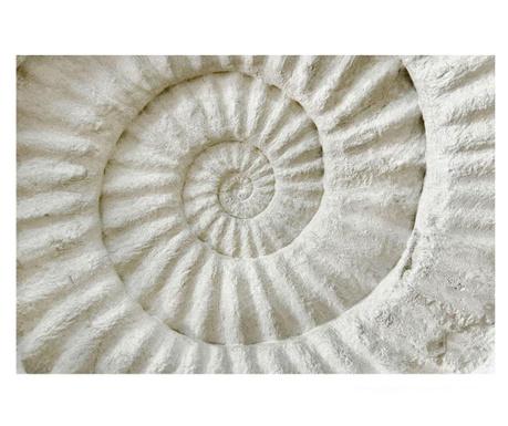 Shell Kép 80x120 cm