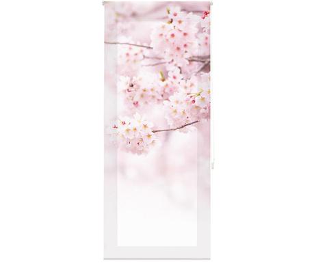 Fotoroleta Cherry Blossom