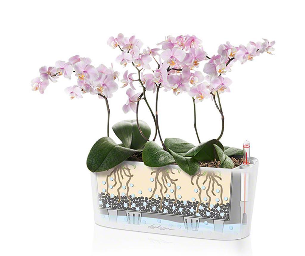 Set - cvetlični lonec z auto-namakalnim sistemom in držalo Delta Violet M