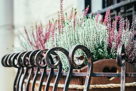 Romantični balkon
