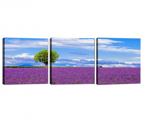 Zestaw 3 obrazów Lavender Field 30x30 cm
