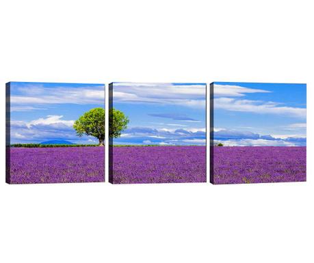Комплект 3 картини Lavender Field 30x30 см