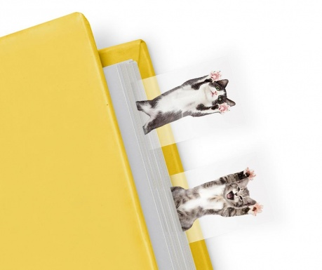 Set 100 marcatoare de pagina Cat in a Book