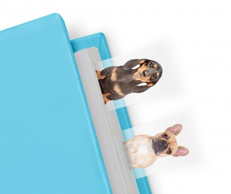 Set 100 marcatoare de pagina Dog in a Book