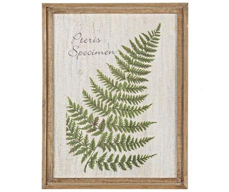Greenery Pteris Festmény 35x45 cm