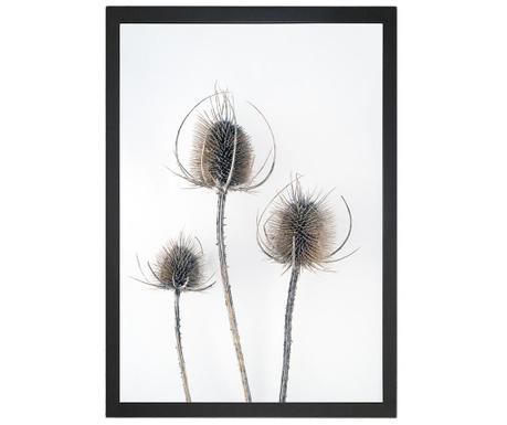 Obraz Thistles 24x29 cm