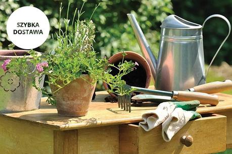 Ogród Esschert Design