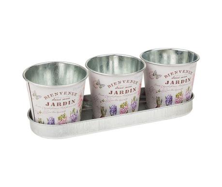 Комплект 3 саксии и поднос Hyacinth