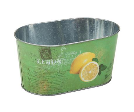 Ζαρντινιέρα Lemon