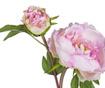 Umjetni cvijet Peony Pink