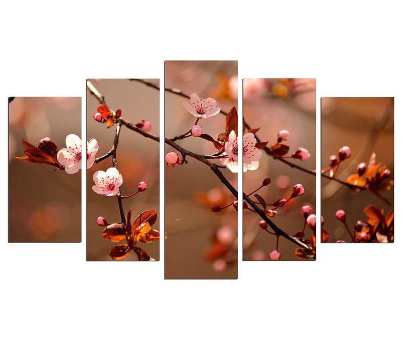 Sada 5 obrazů Blooming