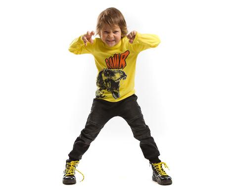 Set bluza si pantaloni pentru copii T-Rex 3 ani