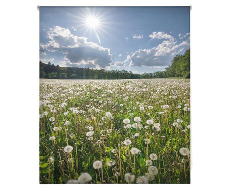 Rolo zavesa Dandelion Field 110x180 cm