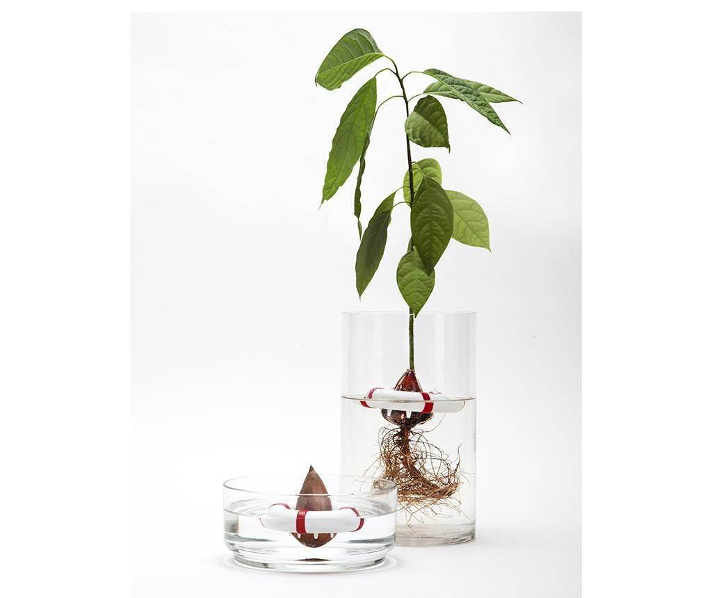 Colac pentru plante Seed Guard