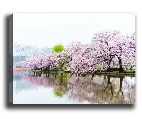 Cherry Blossoms Kép 50x70 cm