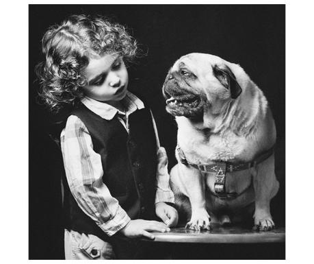 Dog Kép