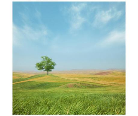Obraz Pasture