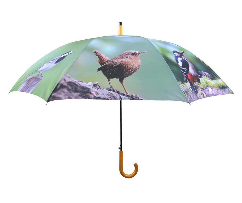 Dežnik Birds