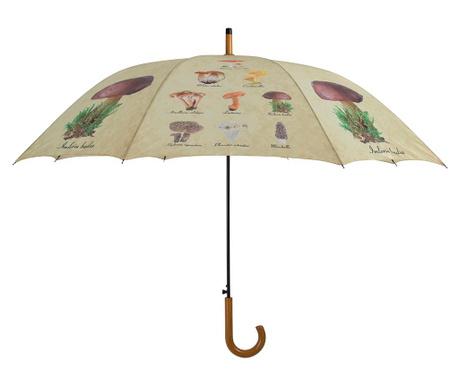 Umbrela Mushrooms