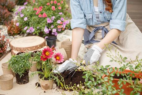 Strast do vrtnarjenja