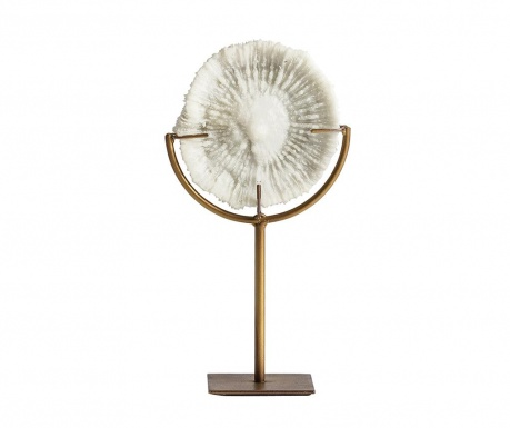Dekoracja Fossil Concha S