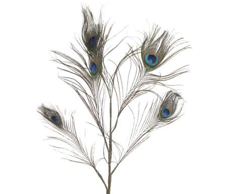 Peacock Bliss Dekoráció