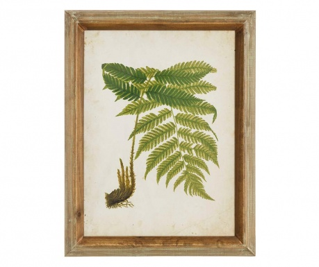 Fern Leaf Right Kép 43x55 cm