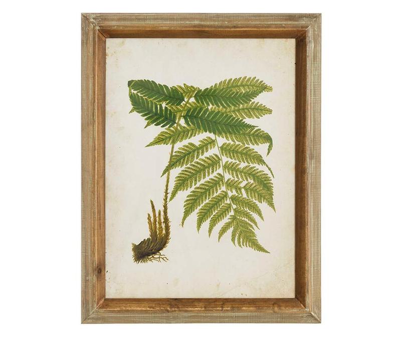 Fern Leaf Right Kép 43x55 cm