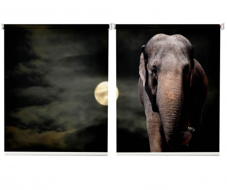 Set 2 rolo zaves Elephant Moonlight 100x200 cm