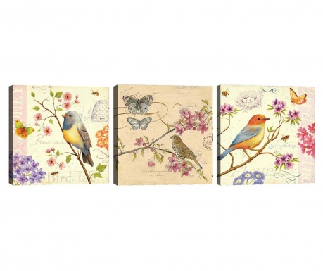 Set 3 tablouri Birds 30x30 cm