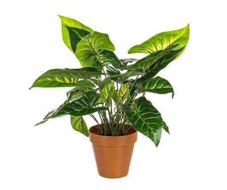 Umjetna biljka u posudi Caladio