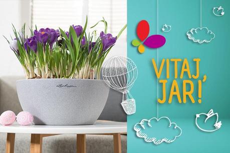 Vitaj, jar: Záhrada Lechuza