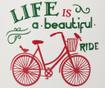 Vaza Beautiful Ride
